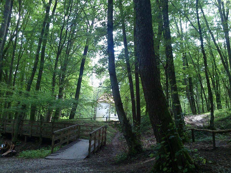 Bakonaki-tó kiránduláson készült fénykép: Az erdő és a kápolna