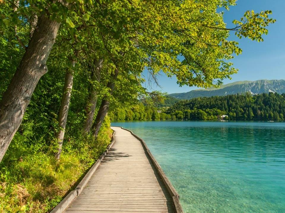 Bledről készült fénykép: Kiépített útvonal a tó körül
